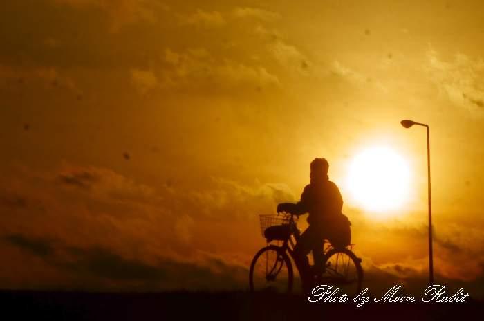 自転車 加茂川堤防 愛媛県西条市古川