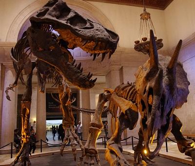 20140111恐竜