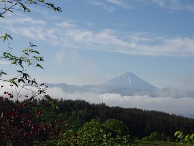 20150522雪の解けた富士山
