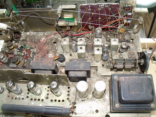 DSCF6250_500x375.jpg