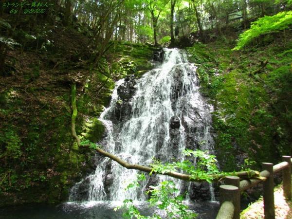 8626白水の滝男滝150517