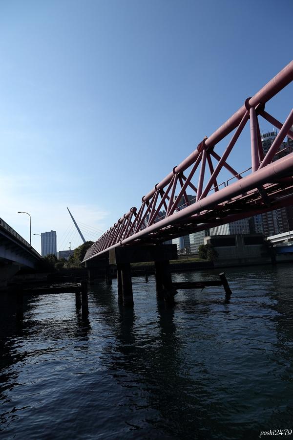 東京湾0408