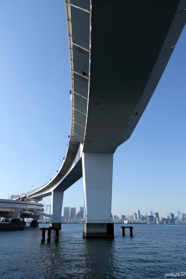 東京湾0501