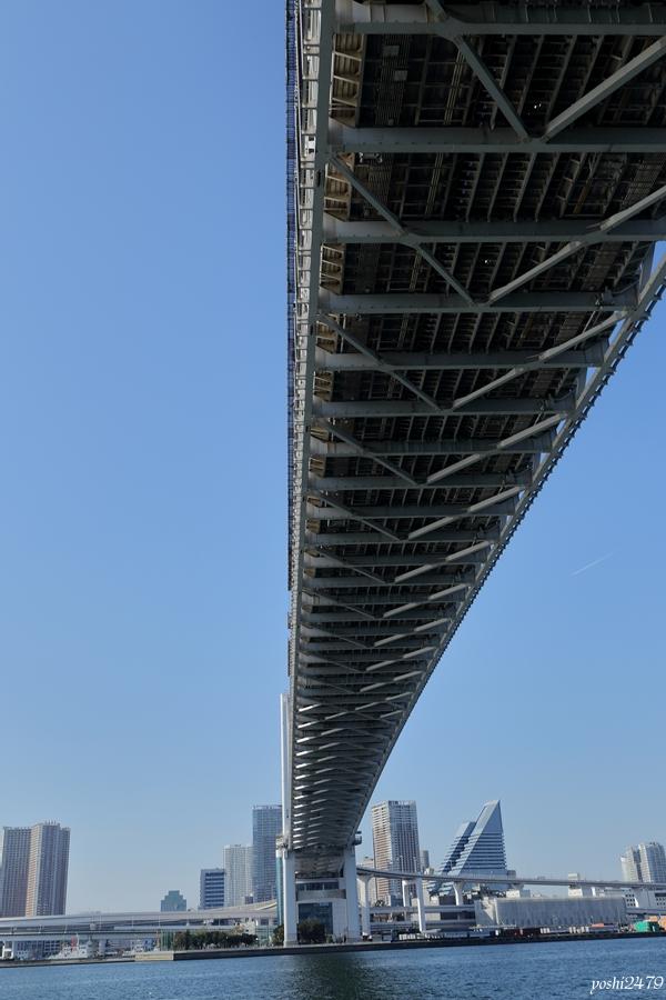 東京湾0508