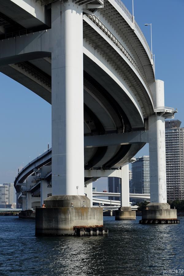 東京湾0513