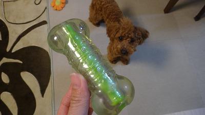 petstagesのおもちゃ