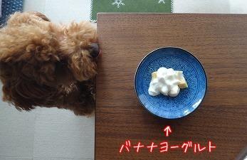 デザートタイム☆
