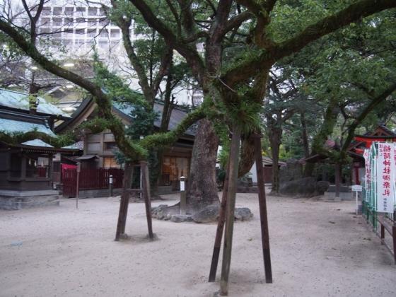 住吉神社33
