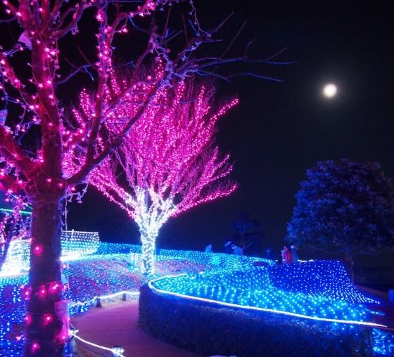 土浦公園09