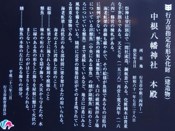P2030014s.jpg