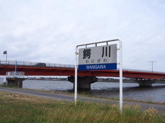 P5120056s.jpg
