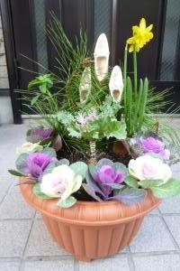 お正月鉢植え