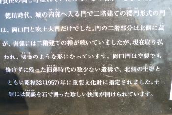 お城 (水仙)