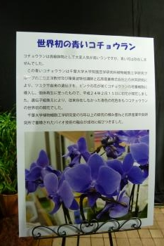 手柄山温室植物園 案内板