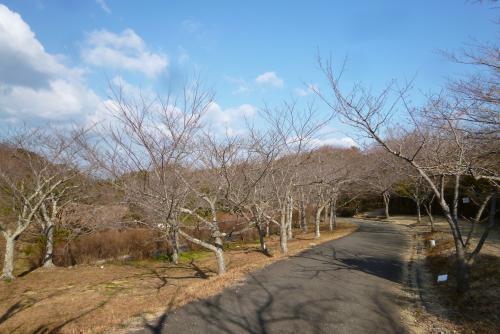 白浜 平草原公園
