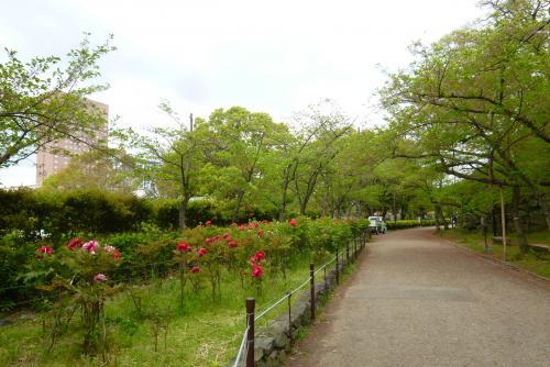 お城 (牡丹園)