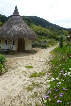 ツーギー谷のお花畑