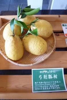 達人村 TATTO MURA 喫茶 山ぼうしさん