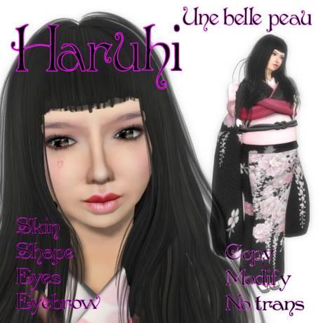 Haruhi skin panel 460