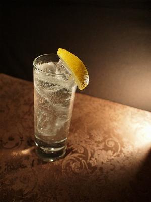 レモンでジントニック151