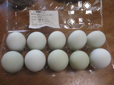 アローカナの卵