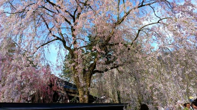 2015-04-22_15-41-34.jpg