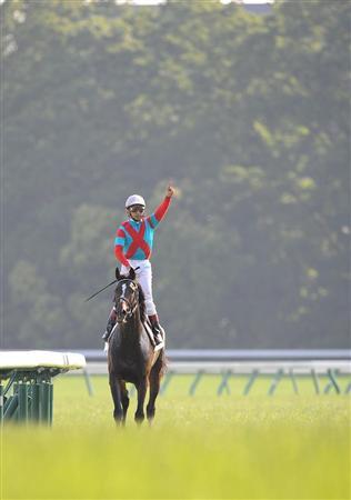 【競馬】歴代ダービー馬で打線組んだwwwww