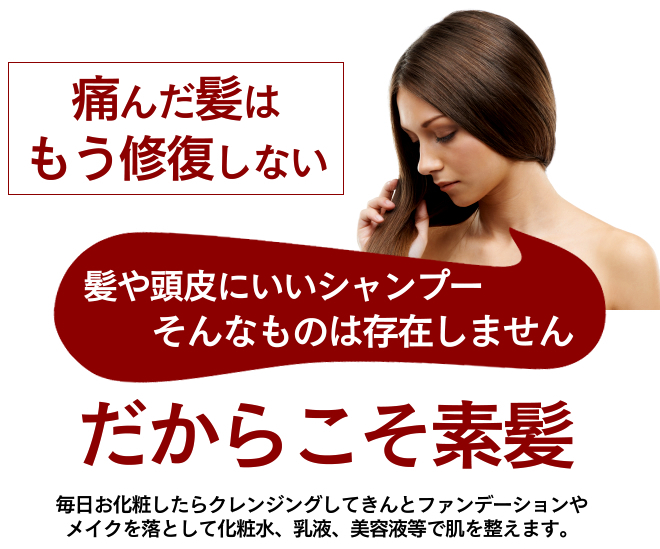 do-s-sya500-04.jpg