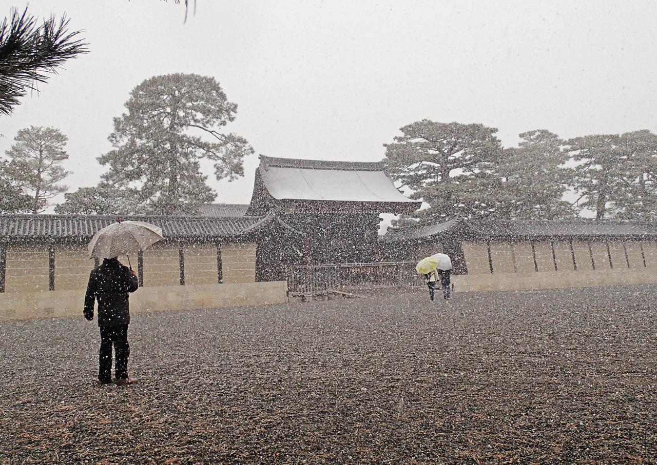 snow_928.jpg