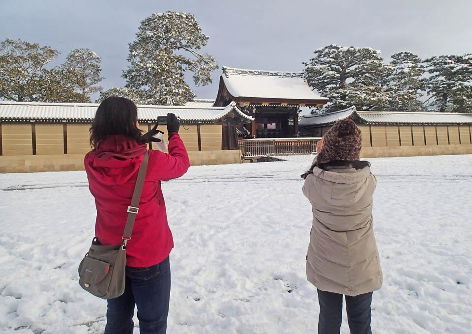 snow_933.jpg