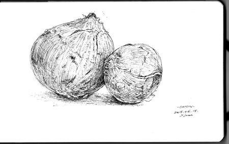 onion 201506