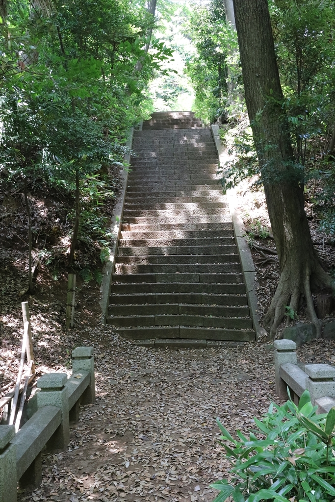 岩崎家の玉川廟に向かうべく、階段をあがる_2
