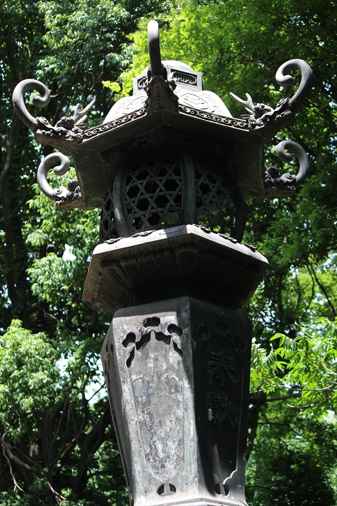 階段を上がった先には立派な灯籠が一対_2