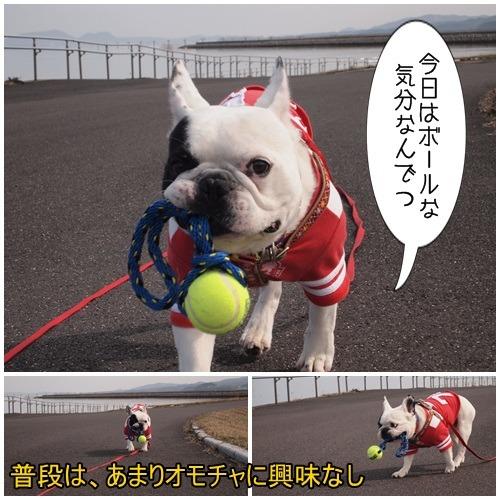 ボール遊び(ふう編)