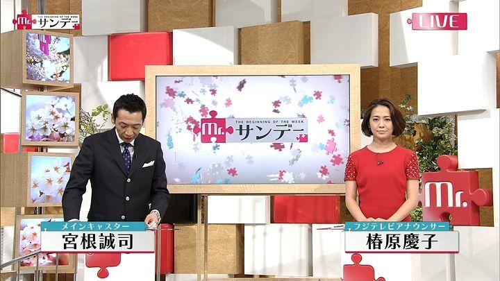 tsubakihara20150322_08.jpg