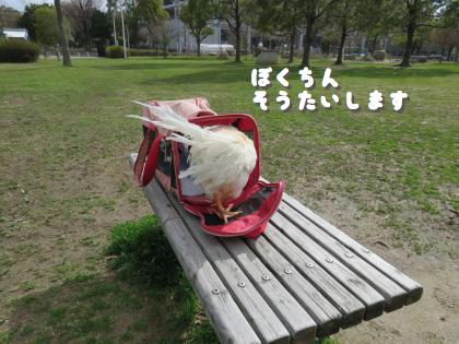 ni-2015-514.jpg