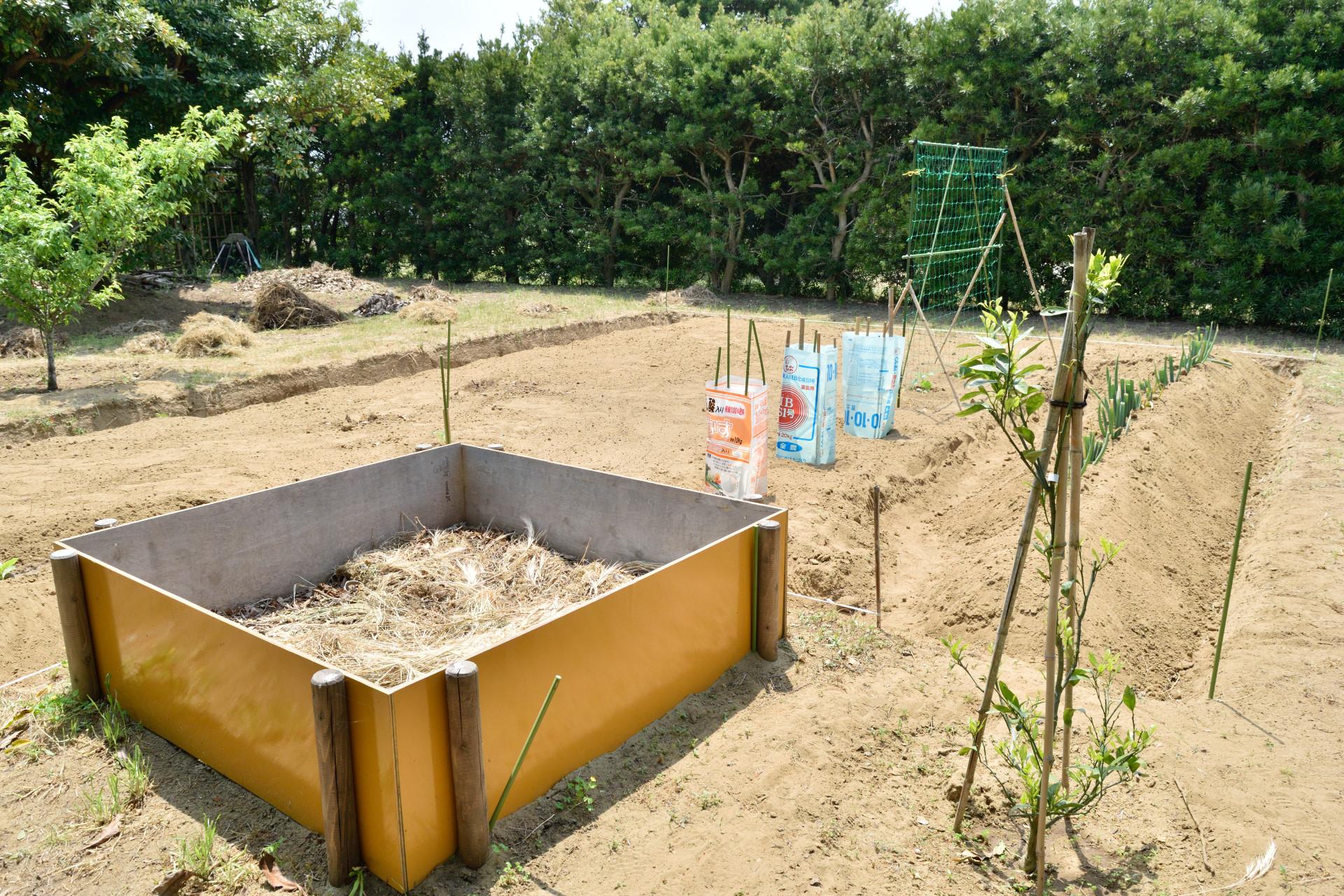庭の一角で家庭菜園