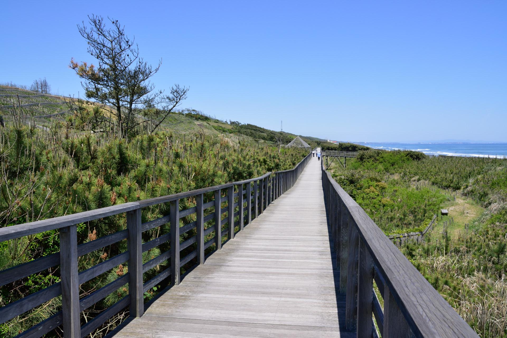 海岸沿いの長い遊歩道橋