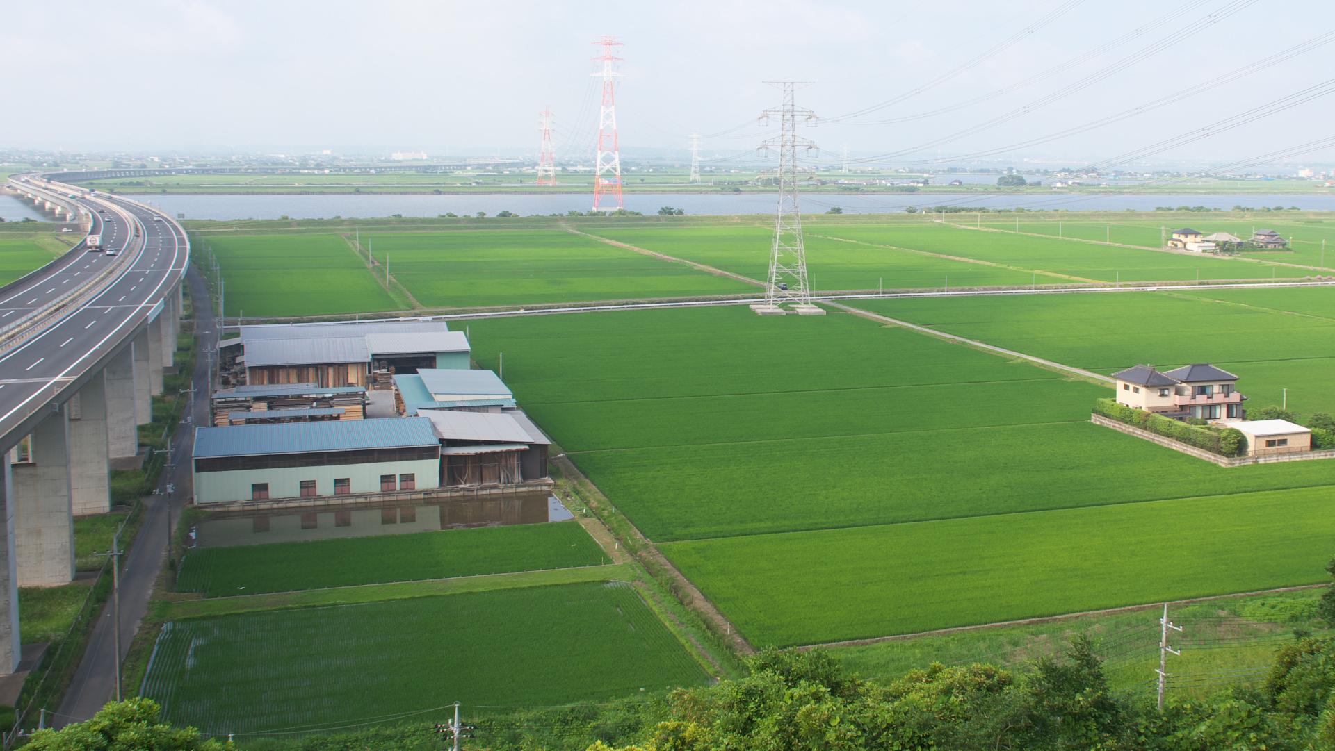 利根川、霞ヶ浦流域の田園風景