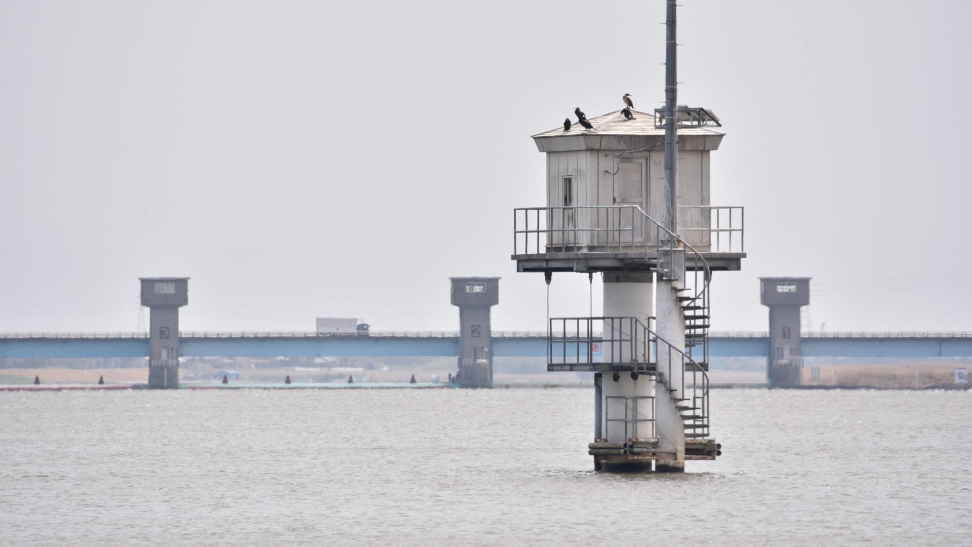 利根川の汐留