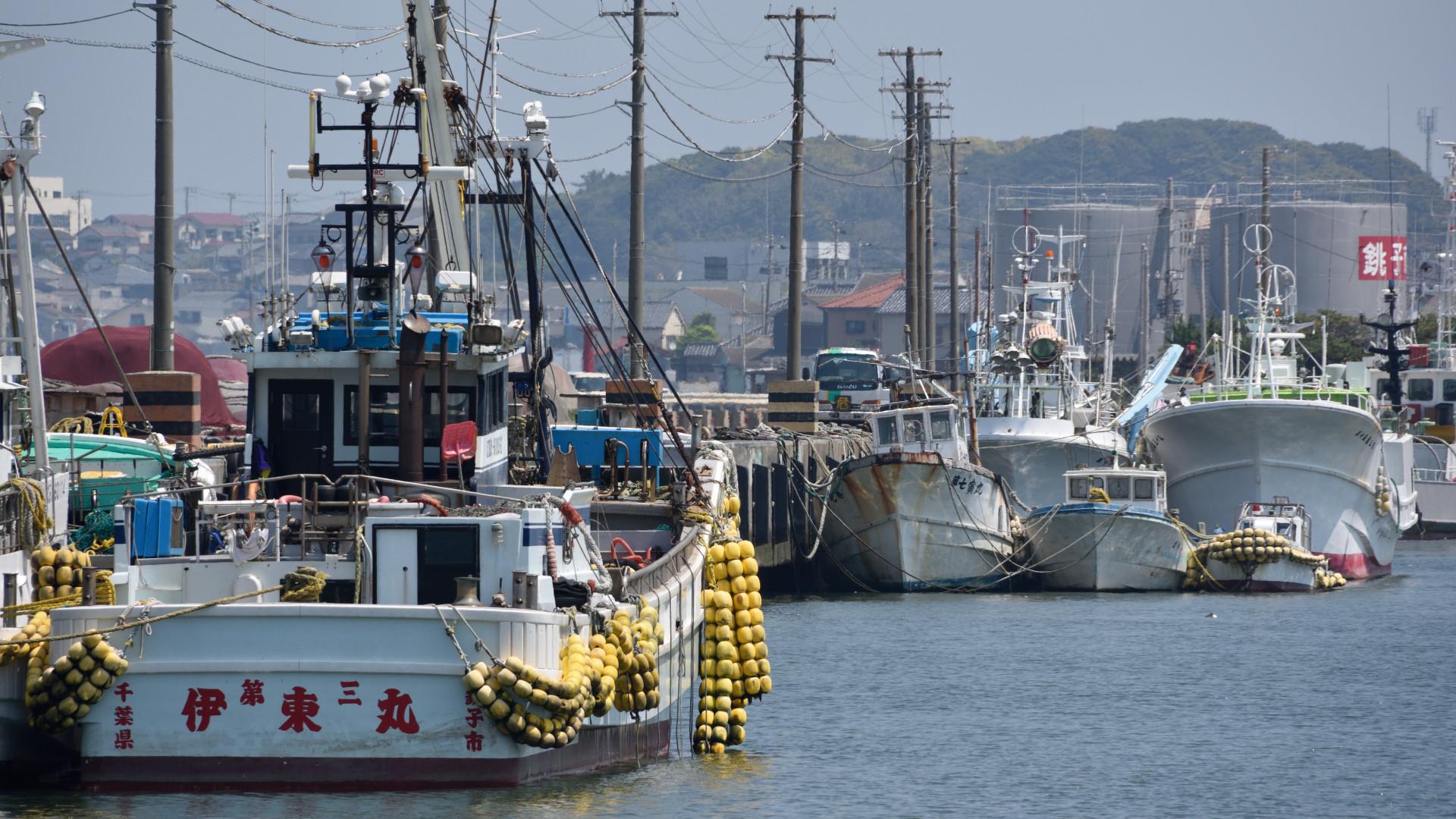 銚子漁港の漁船群