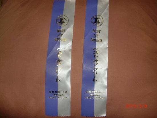 10S09 リボン 0308