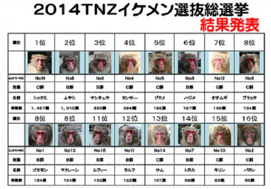 5大分県・高崎山自然動物園2014イケメン選手権