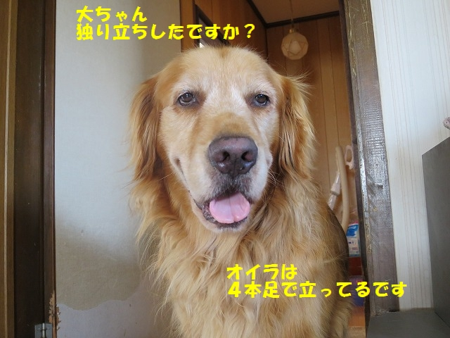 IMG_4558.jpg