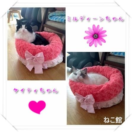 blog5_201501071132270f5.jpg