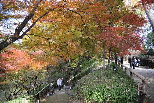 北野八幡宮07