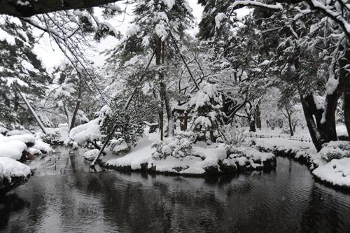 正月の兼六園2015_08