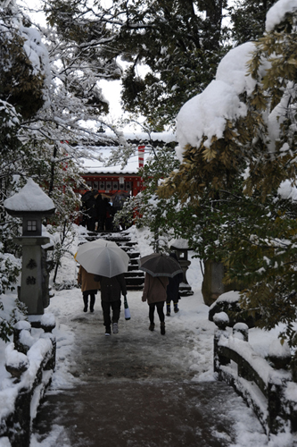 正月の金澤神社2015_02