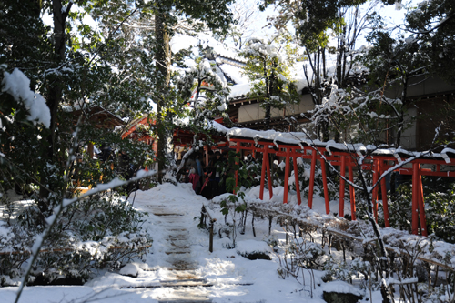 正月の金澤神社2015_04