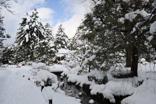 正月の兼六園2015_16